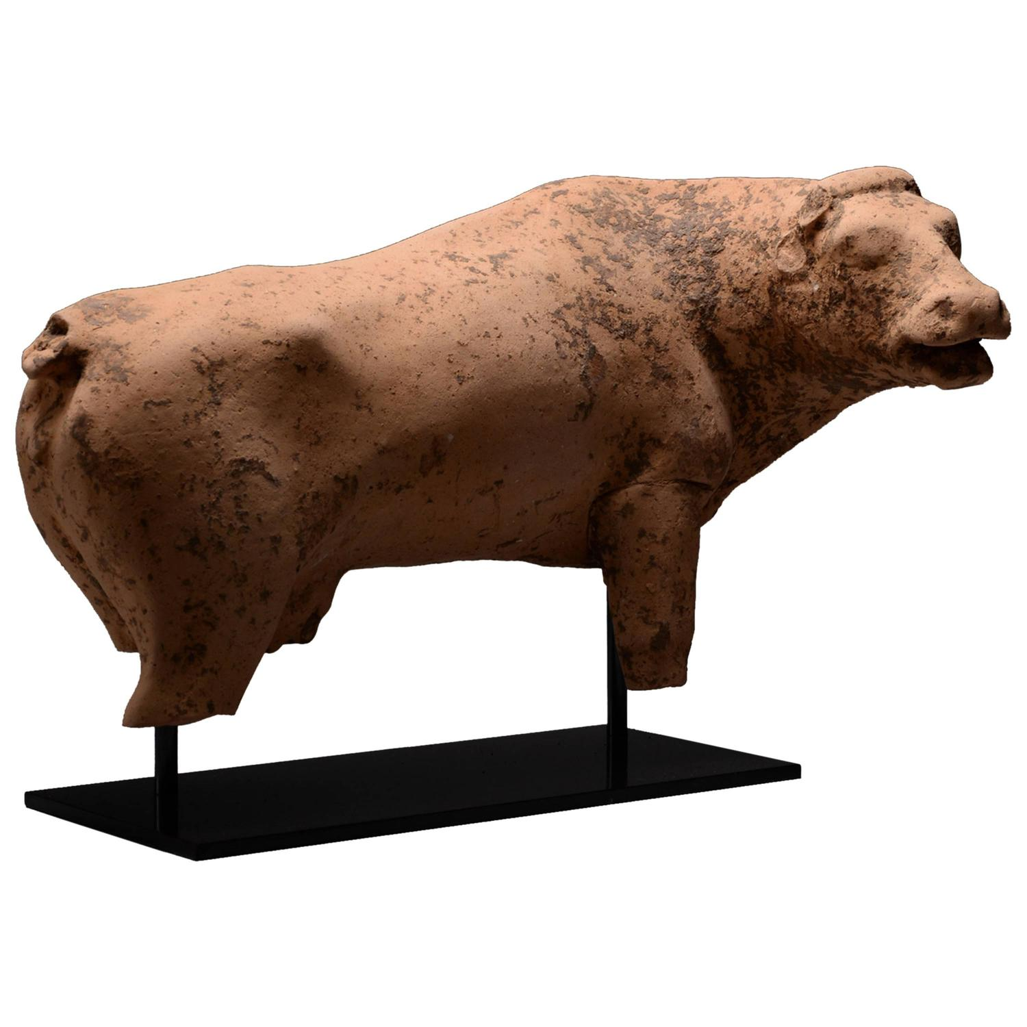 Ancient Greek Terracotta Cow Sculpture 450 Bc For Sale