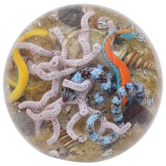 "Gordon Smith ""Sea Life"" Paperweight"