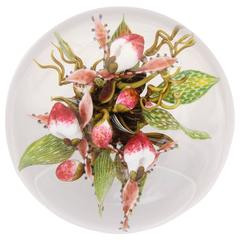 Beautiful David Graeber Compound Lady Slipper Paperweight