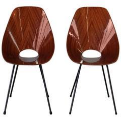 Pair of Rosewood Medea Chairs, Vittorio Nobili