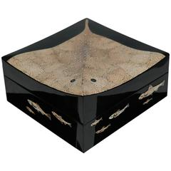 Box in Lacquer and Eggshell