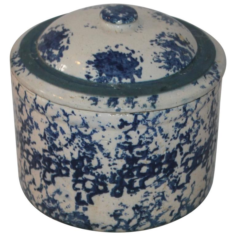 19th Century Rare Sponge Ware Butter or Salt Crock with Lid For Sale
