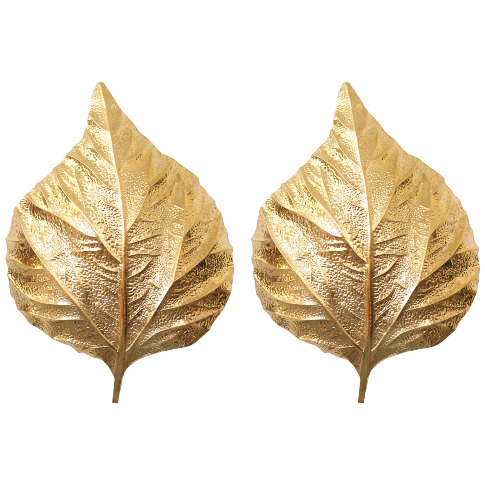 1 of 4 Huge Ginkgo Leaf Brass Wall Lights or Sconces by Tommaso ...