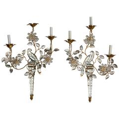 Pair of French Three-Light Sconces
