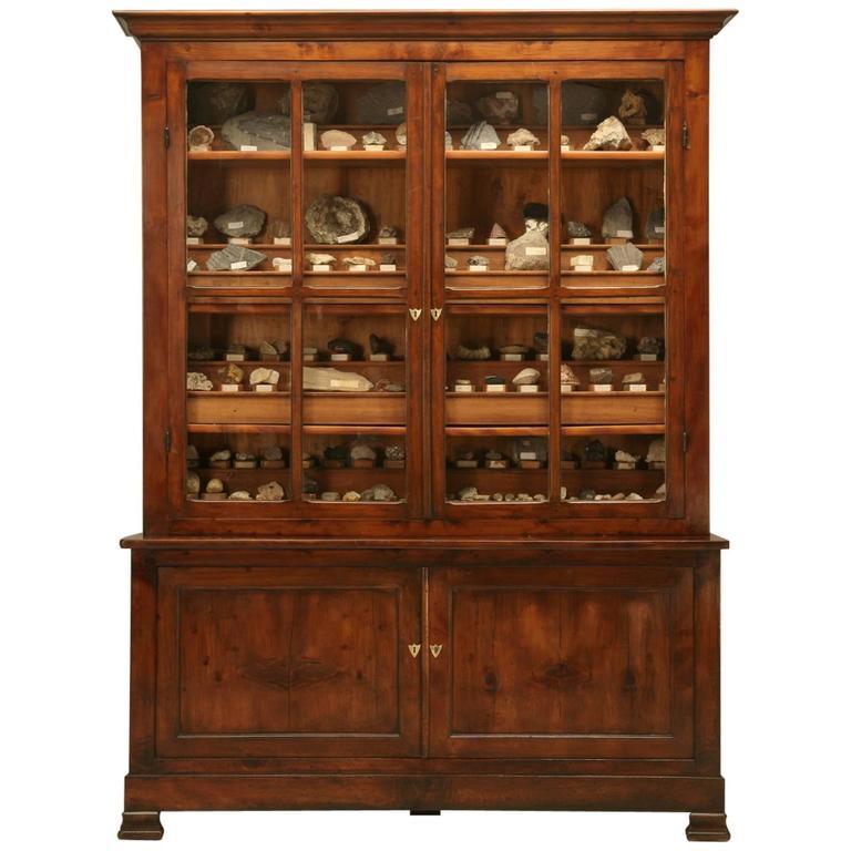 French Specimen Cabinet or Bookcase, circa 1891 1