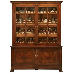 French Specimen Cabinet or Bookcase, circa 1891