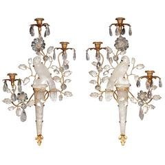 Pair of Bagues Style Parrot Sconces