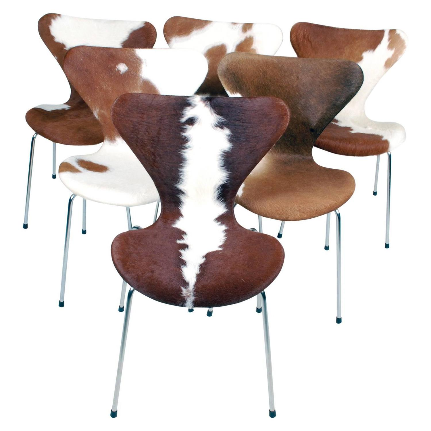 Arne Jacobsen Series 7 Chair with Cowhide Model 3107 for Fritz