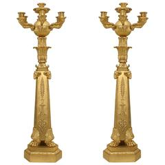Important Pair of French Empire Bronze Dore Six-Arm Candelabra
