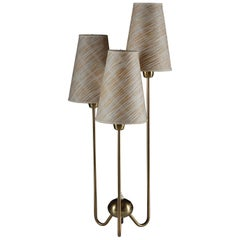 ASEA Table Lamp in Brass with Original Shades