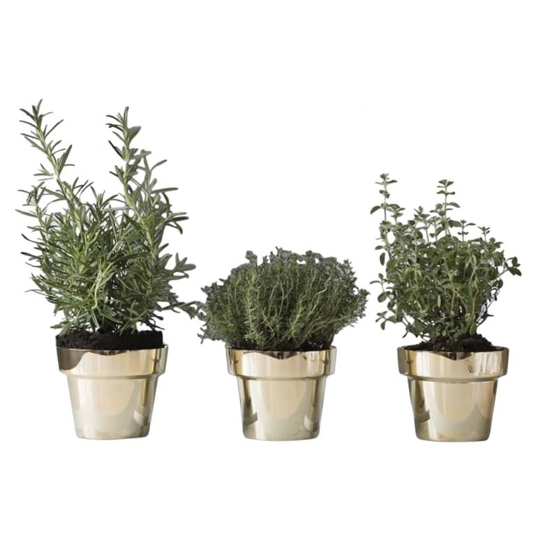 Three Skultuna Herb Pots, Design by Monica Forster, Swedish Design 1