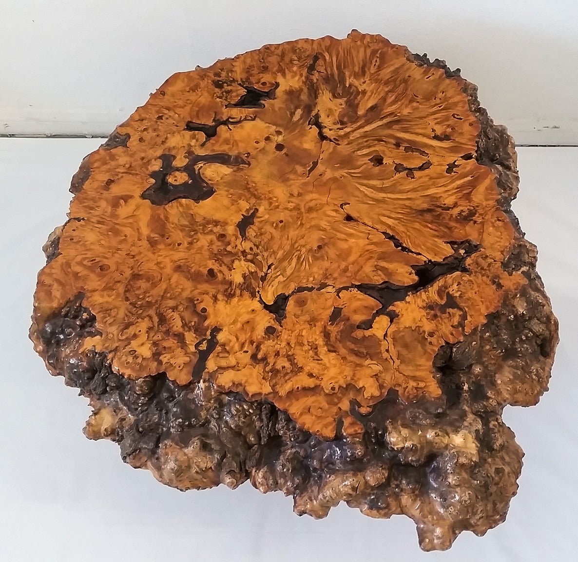 Teak Root Coffee Table Canada: Cypress Root Coffee Table At 1stdibs