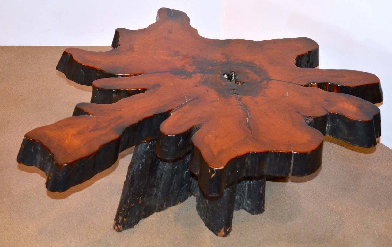 Live Edge Redwood Burl Coffee Table 1970s For Sale At 1stdibs