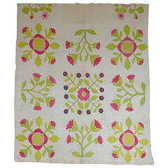 Applique Quilt with Floral Motifs on a White Background
