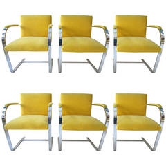 Six 1960s Mies van der Rohe BRNO Dining Chairs in Yellow Mohair