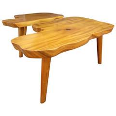 Mid-Century Pair of Biomorphic Monkey Pod Hawaiian Side Tables