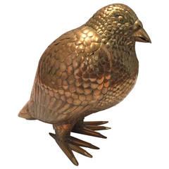 Bustamante Pigeon