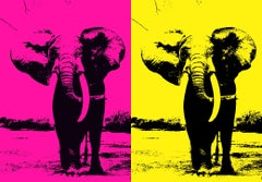 Two Elephant - In Pink & Yellow, Hand Printed Work, Screen