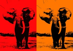 Two Elephant - In Orange & Red Orange, Hand Printed Work, Screen