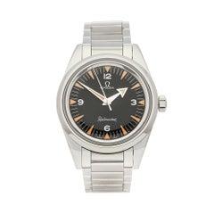 2017 Omega Railmaster Stainless Steel 22010382001002 Wristwatch