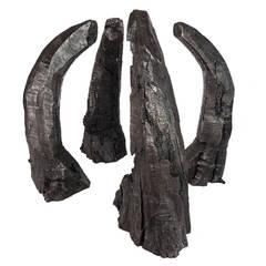 Bronze Cast Boxelder Wood Sculptures by Phoebe Knapp
