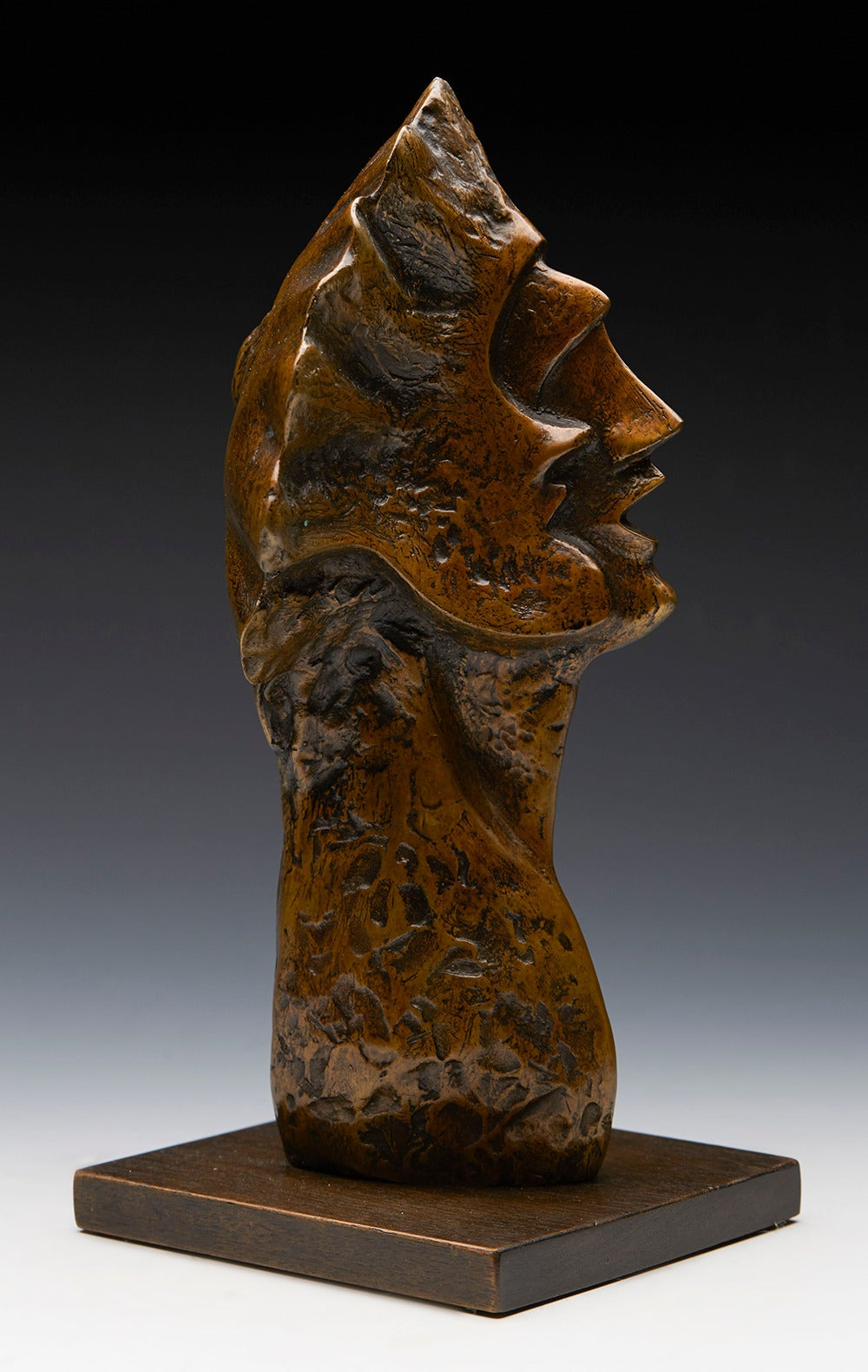 Profile heads is a limited edition bronze head carved in profile and mounted on a rectangular wooden plinth. The head has a textured and smooth finish with a wonderful bonze patination. The bronze is numbered 0 of an edition of 7 and is