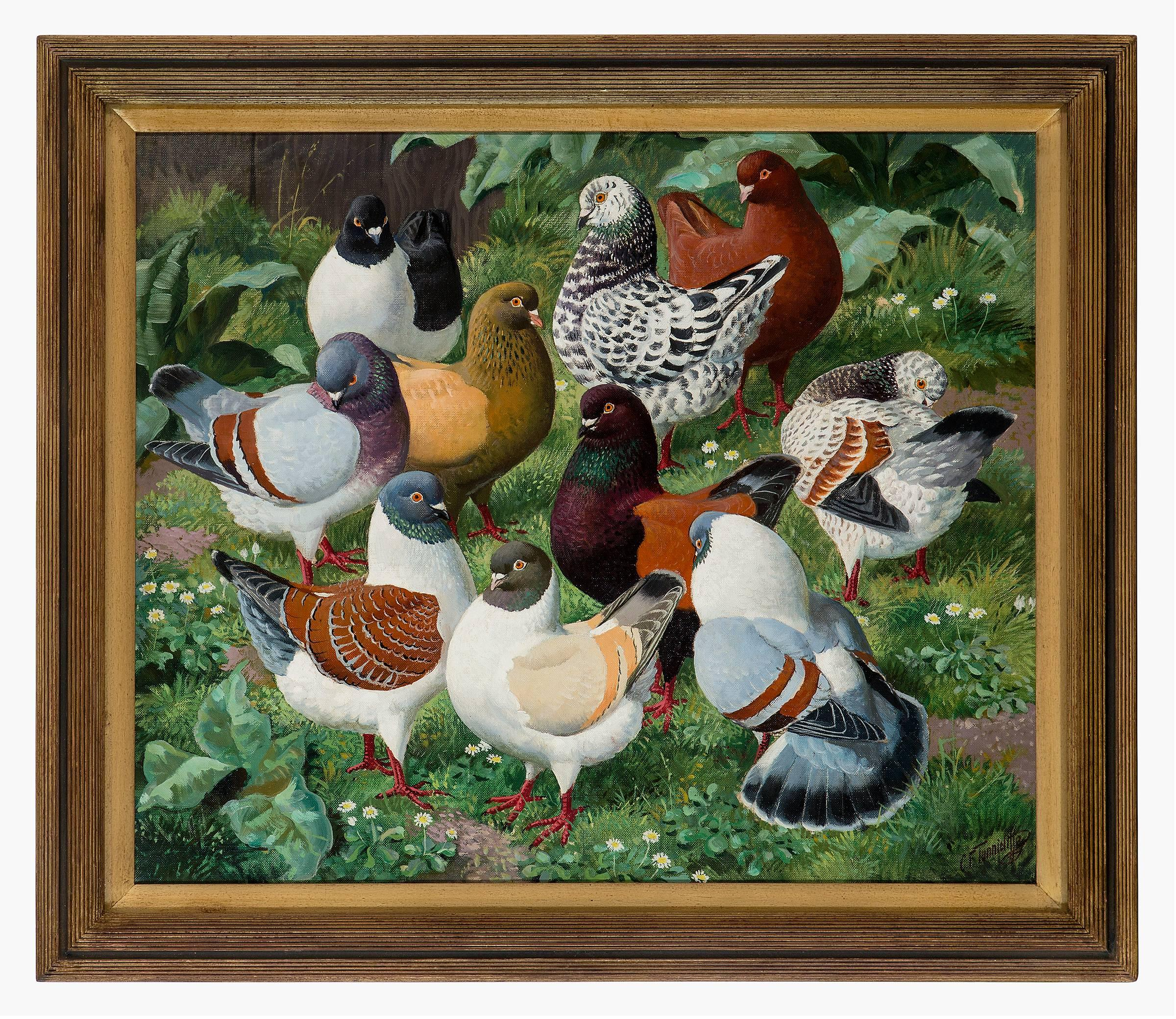 The Fashion Parade - 20 century animal painting by Charles Frederick Tunnicliffe