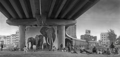 Underpass With Elephant - Black and White Photography by Nick Brandt