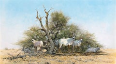 Arabian Oryx - Late 20th Century, Animal Painting, Oil Paint by David Shepherd