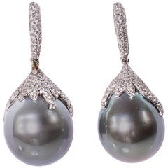 Magnificent Cultured Black South Sea Pearl and Diamond Earrings