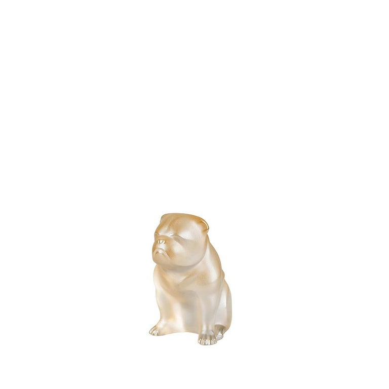 For Sale: Gold (Gold Luster) Bulldog Sculpture in Crystal Glass by Lalique