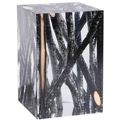 Side Table in Acrylic Glass with Burnt Wood