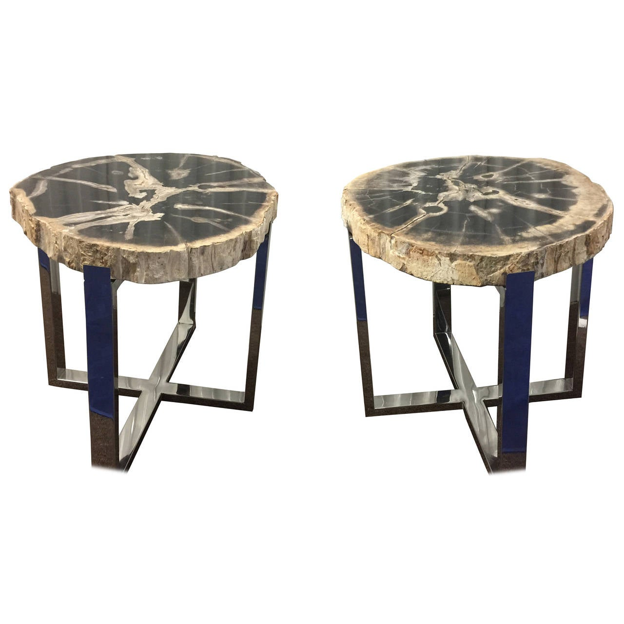 Organic modern style pair of petrified wood and chrome end