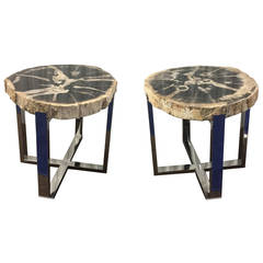 Organic Modern Style Pair of Petrified Wood and Chrome End or Side Tables
