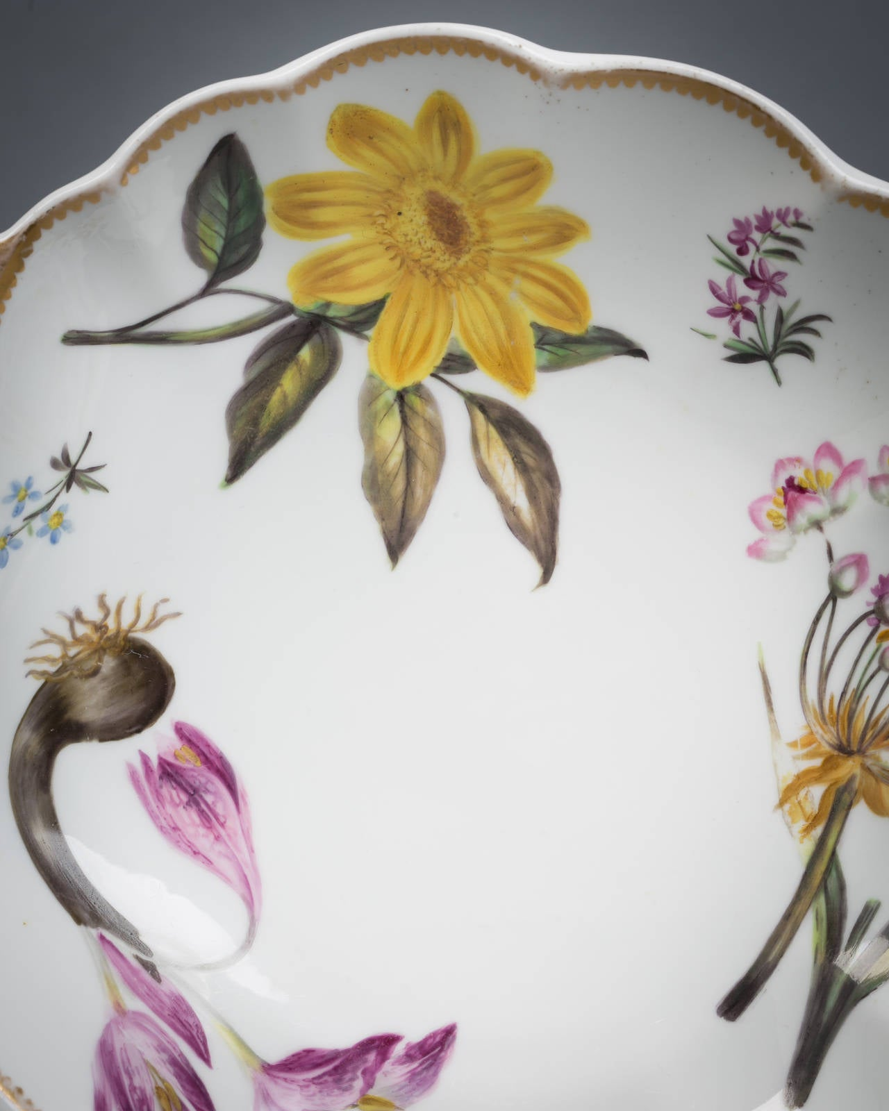 Pair of English Spode Porcelain Botanical Shell-Shape Dishes, circa 1820 In Good Condition For Sale In New York, NY