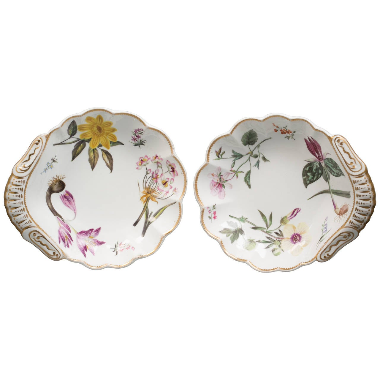 Pair of English Spode Porcelain Botanical Shell-Shape Dishes, circa 1820 For Sale