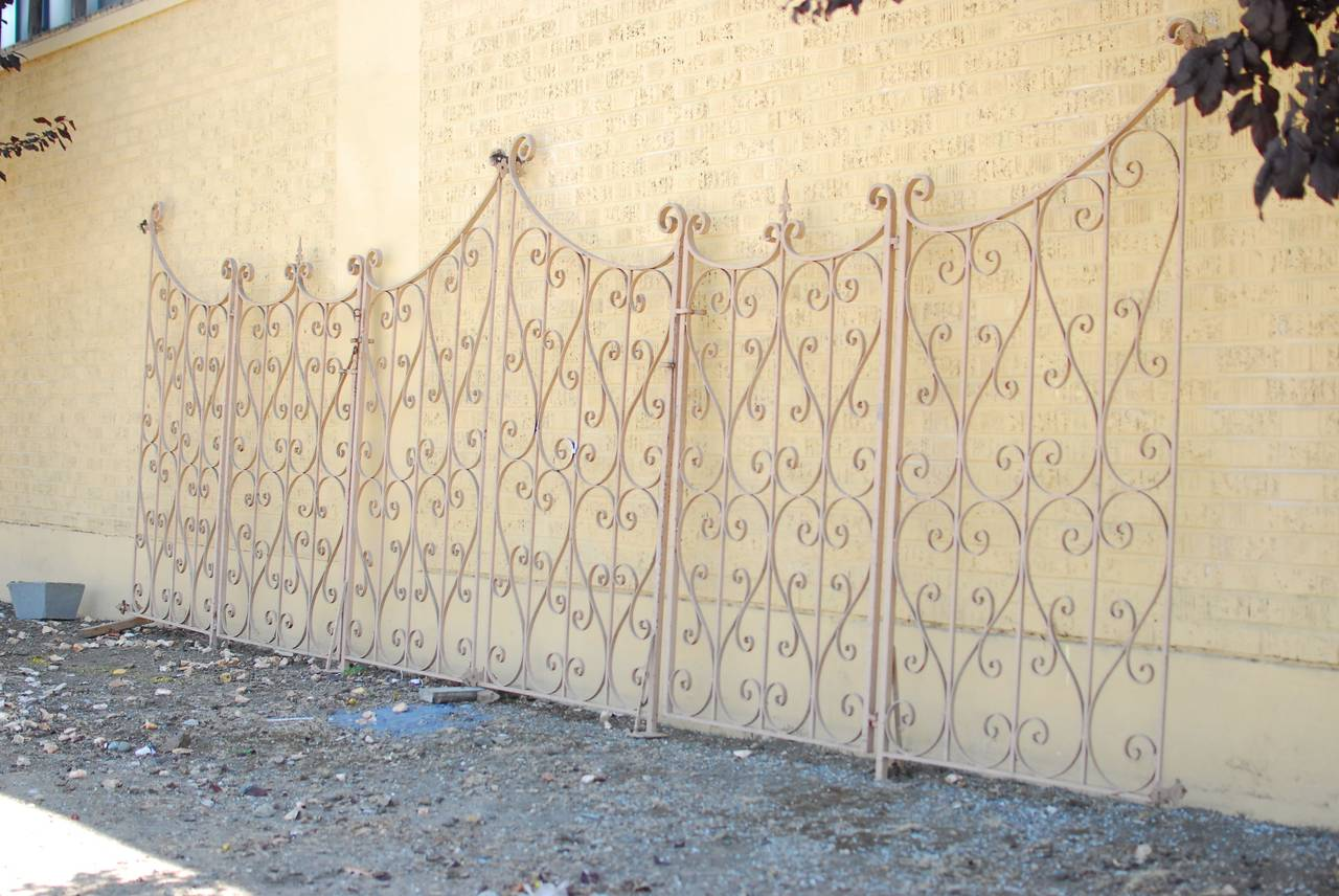 French Wrought Iron Garden Gate or Fence 9