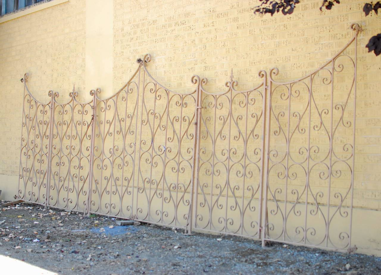 French Wrought Iron Garden Gate or Fence 2