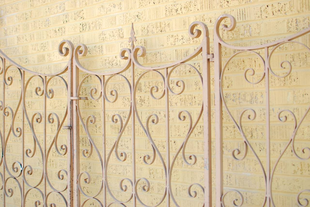 French Wrought Iron Garden Gate or Fence 3