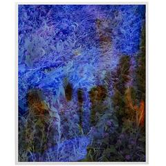 Tealia Ellis-Ritter, Untitled (Blue, Black Forms), 2015