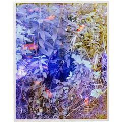 Tealia Ellis-Ritter, Blue, 2016