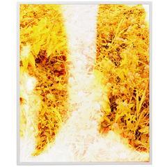 Tealia Ellis-Ritter, Untitled 'Yellow', 2015