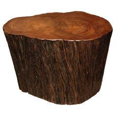 Petrified Teak Stump