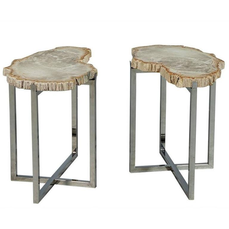 Pair of Petrified Wood Accent Tables For Sale