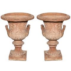 Pair of Terracotta Urns