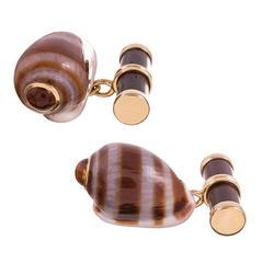 Trianon Cassidula Shell Citrine Rosewood Cufflinks