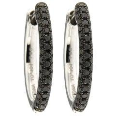 Jona Black Diamond 18 Karat White Gold Hoop Earrings