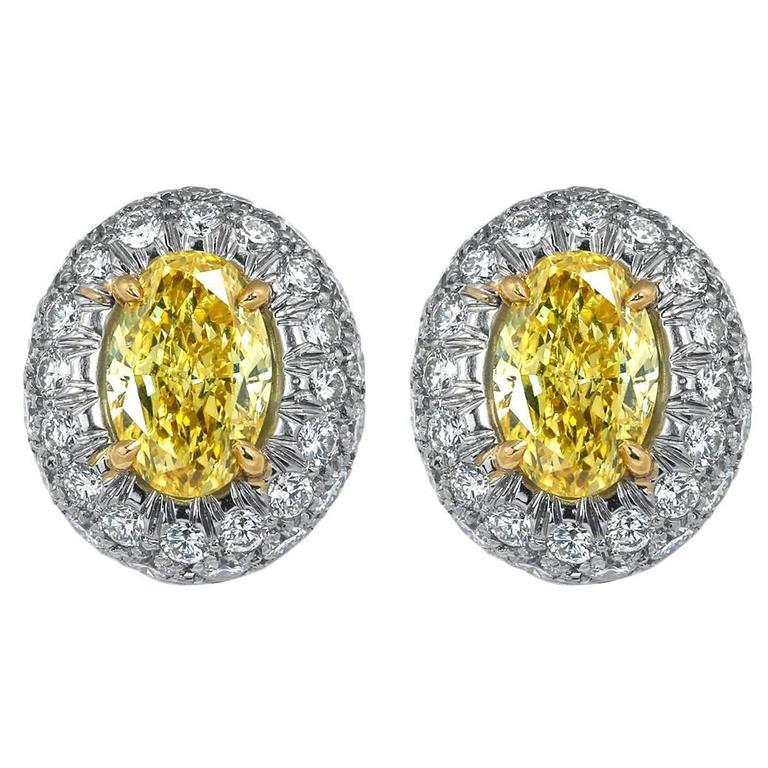 Oval Shaped Canary Diamond Gold Earrings
