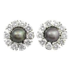 Rare Grey Natural Saltwater Pearl Diamond Gold Earrings