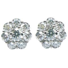 Floral Diamond White Gold Cluster Stud Earrings